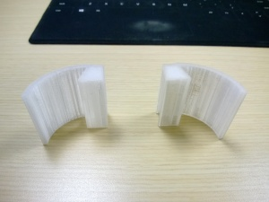 3D Pair of Ears